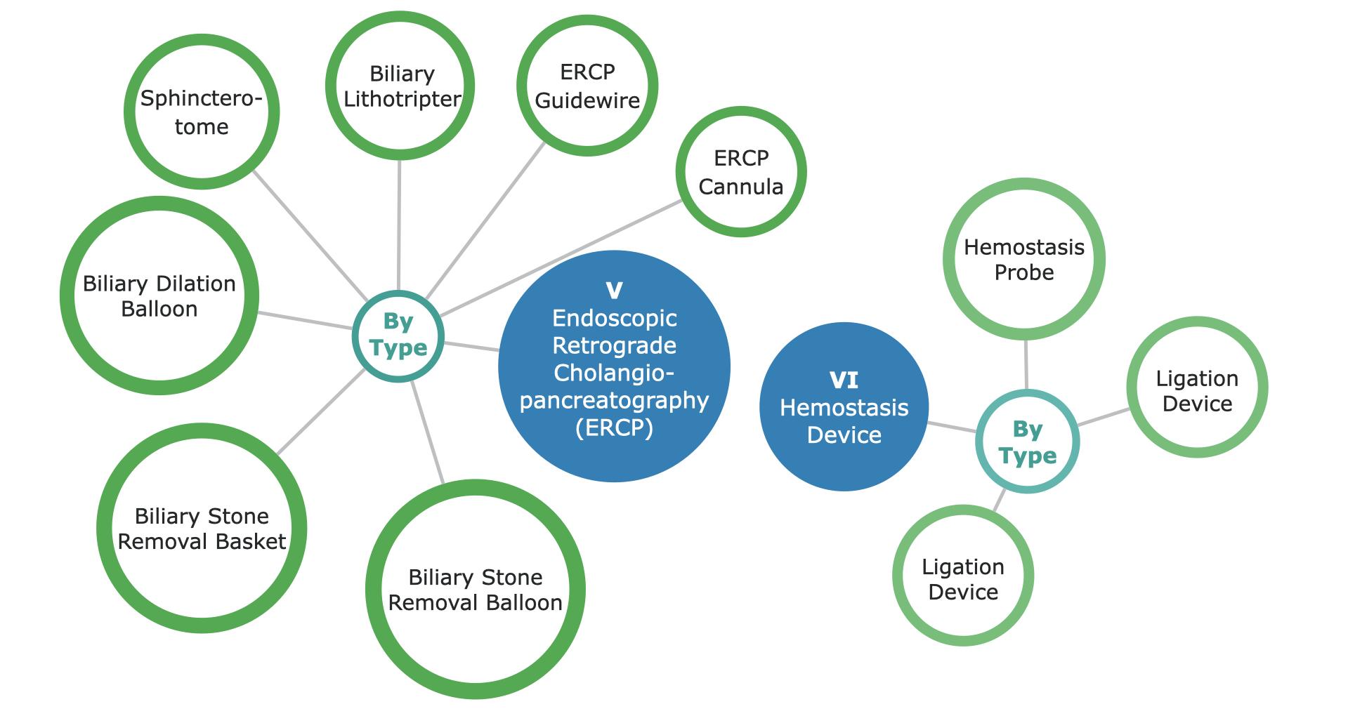 Chinese Gastrointestinal Endoscopy Device Market Segmentation - p2