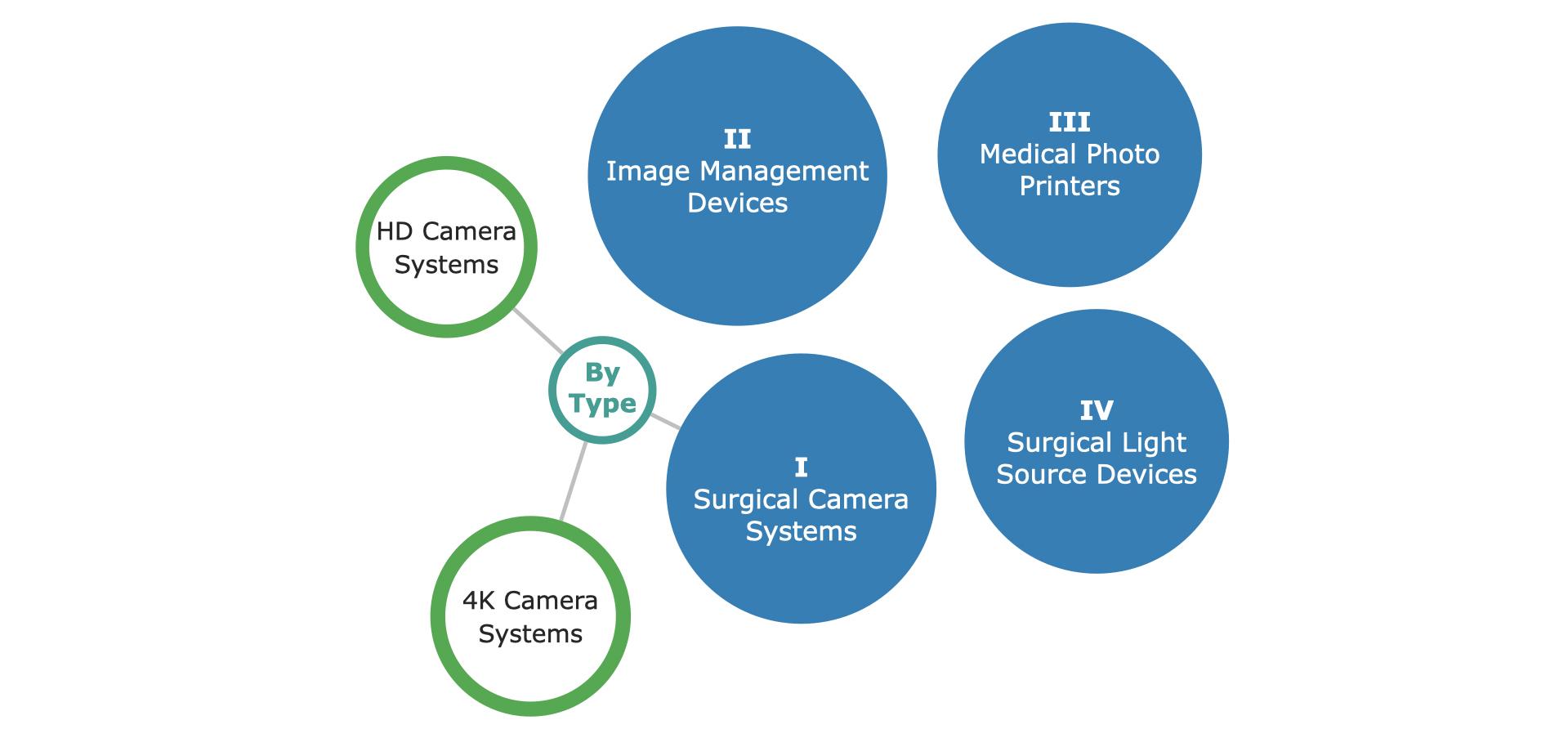 EU Video Endoscopy Market Segmentation