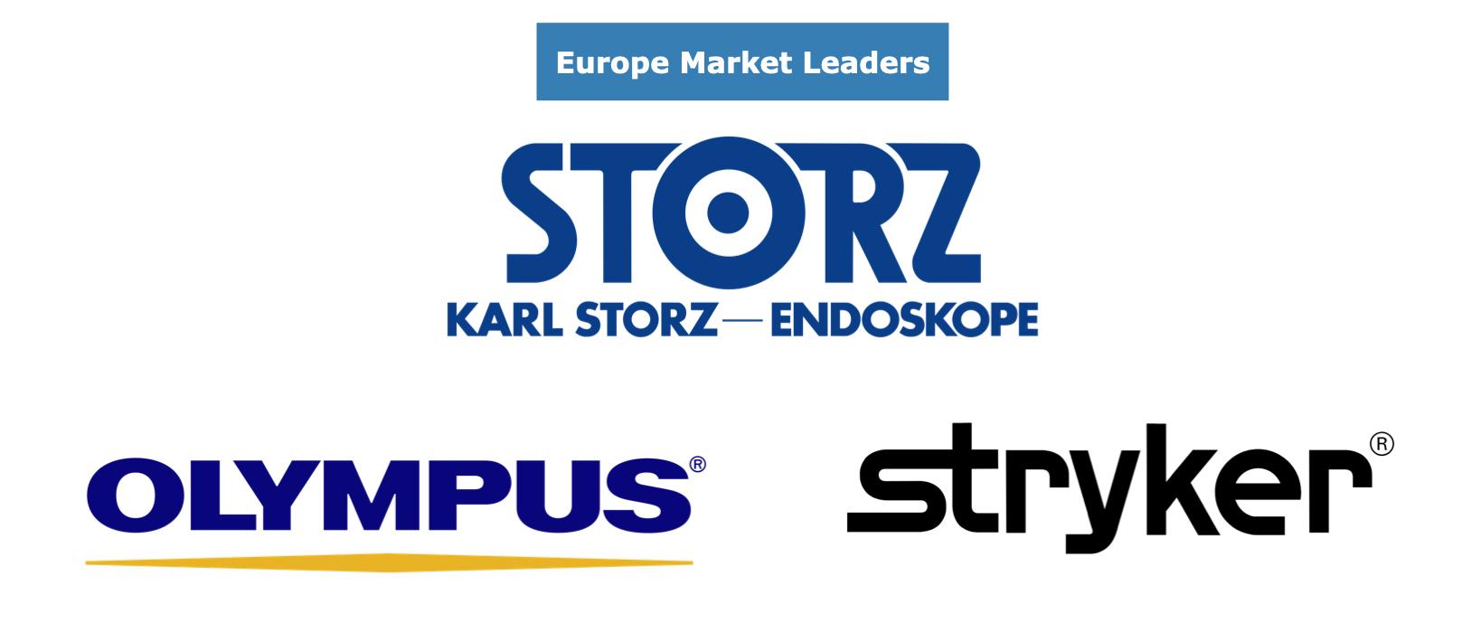 EU Video Endoscopy market share leaders