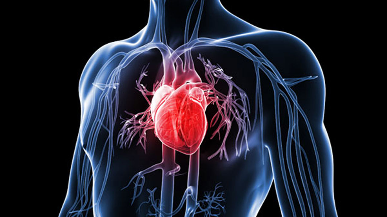 Over 965,000 Angioplasties are Performed Each Year in the United