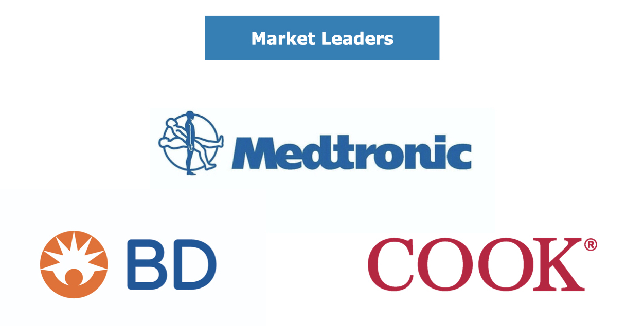 Leading Competitors in the EU Peripheral Vascular Market
