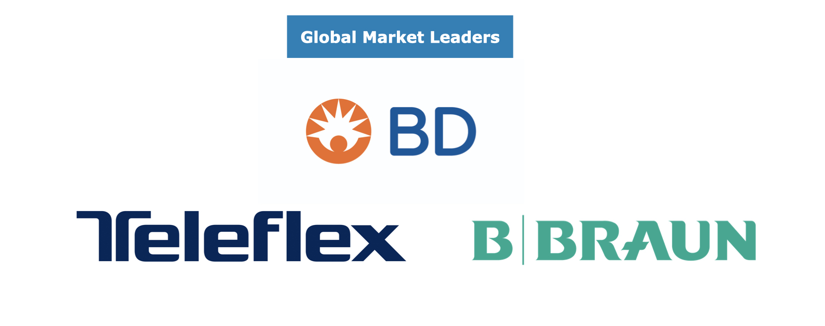 Global Vascular Access Market Leaders
