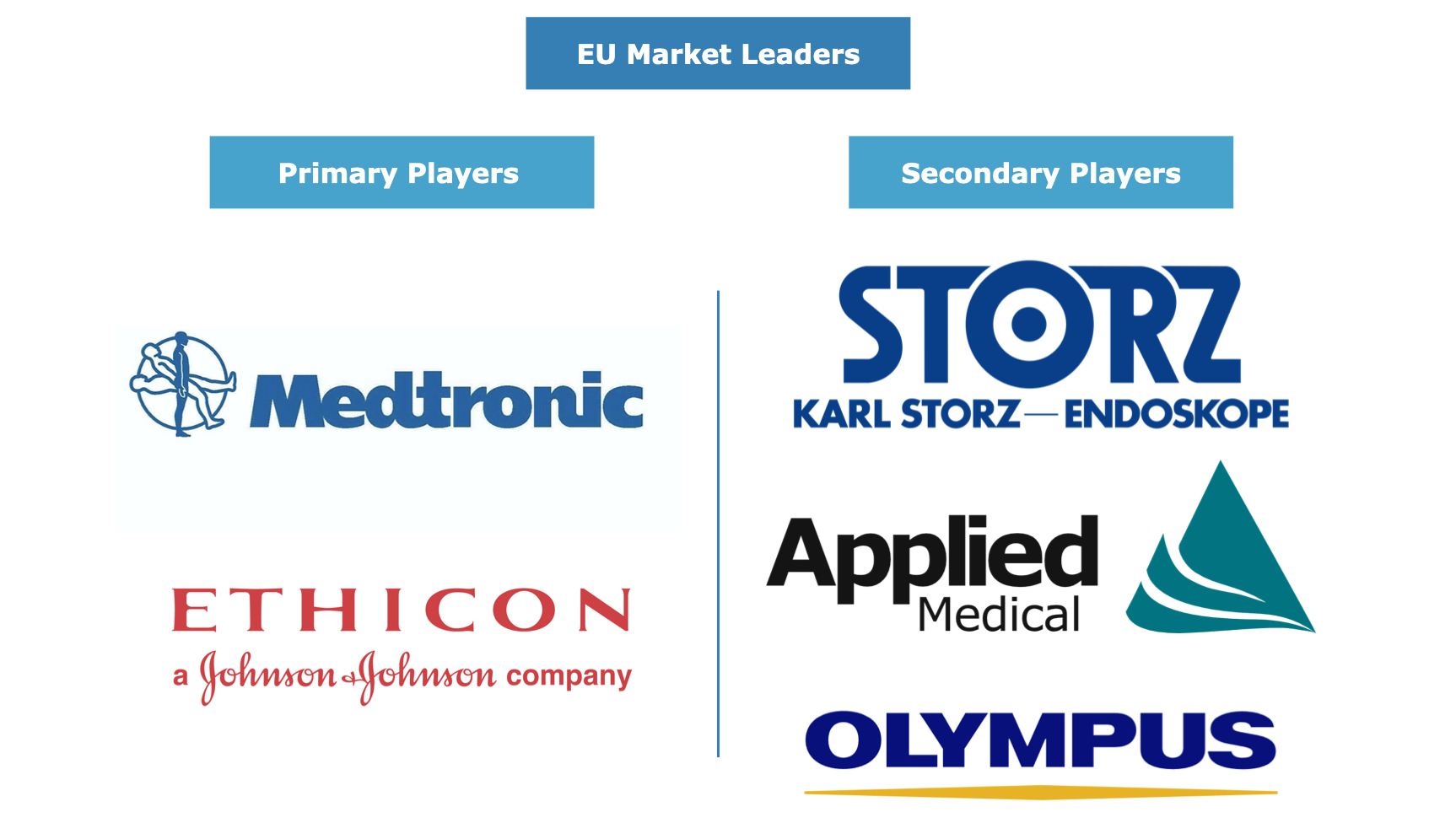 European Laparoscopic Devices Market Leaders