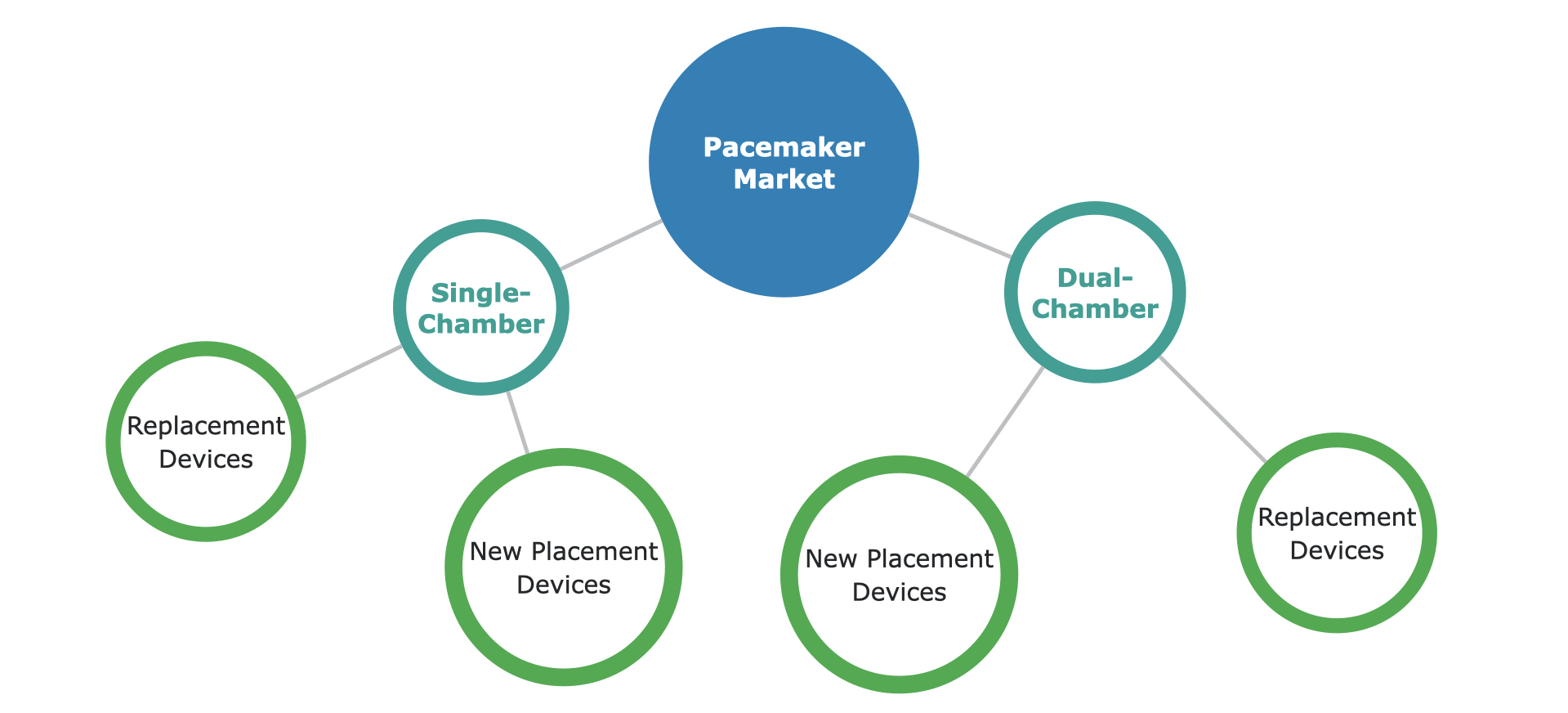 Global Pacemaker Market Segmentaiton