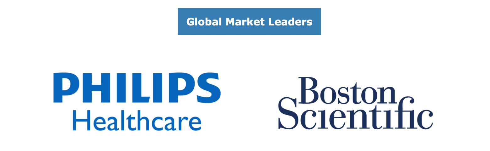 Global IVUS Market Share Leaders